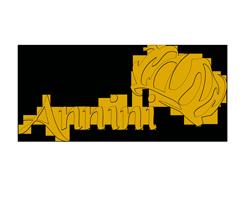 Logo Annini
